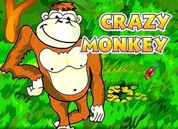 Слот Crazy Monkey